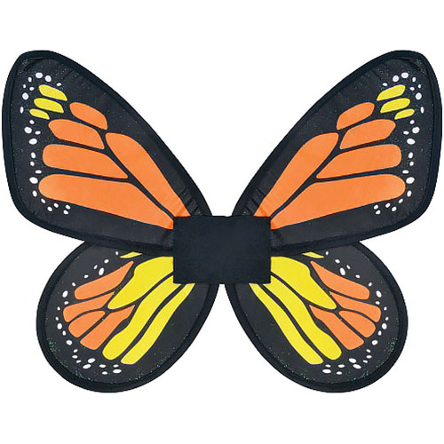 Monarch Butterfly Wings (Childs)
