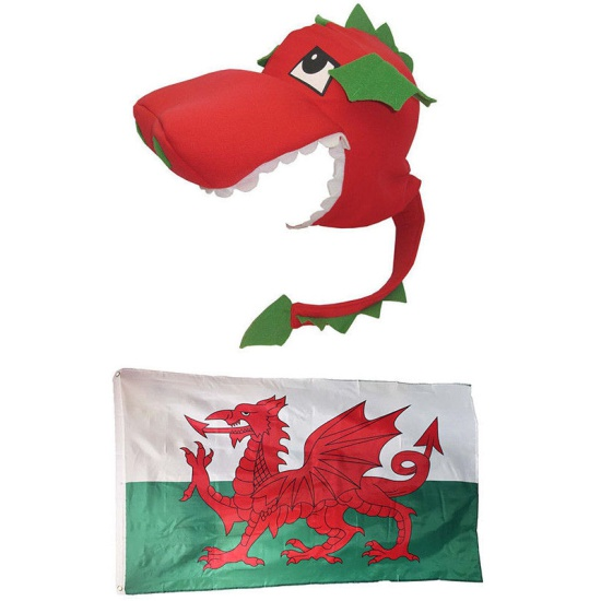 Welsh Flag And Dragon Hat